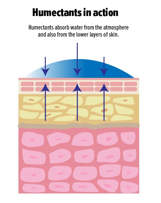 humectant moisturizers in action